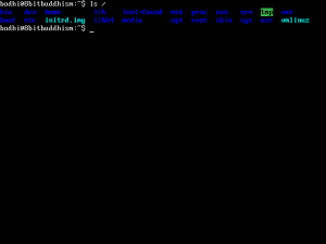 ls command example